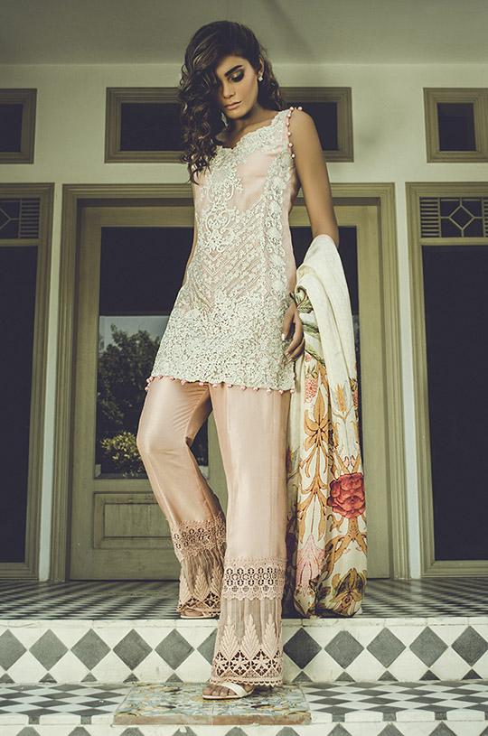 Collection eid Hottest by tena durrani fotos