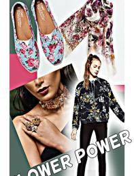 flower_power_feature_jan_13_2017_v2